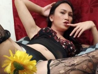 BeautyNipponTS  Hello I´m Jelly, your sexy trans-babe. I will make your fantasies come true - and you will enjoy it.  Let's get together, and let our desires run wild!